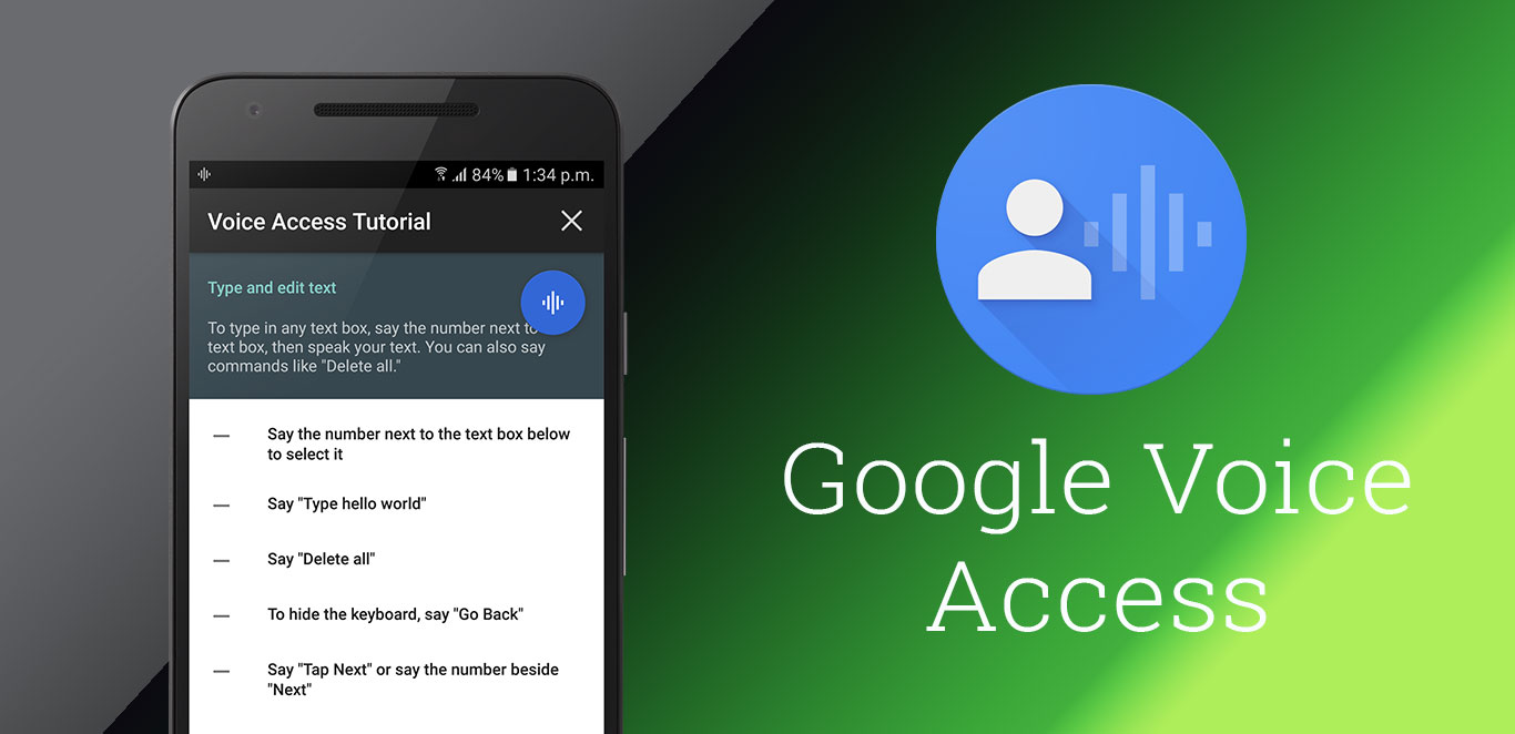 GoogleVoiceAccess
